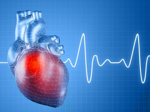Народные методы лечения мерцательной аритмии сердца
