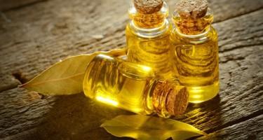 Свойства и применение эфирного масла чайного дерева
