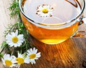 Чай с ромашкой: польза, лечебные свойства, противопоказания, рецепты