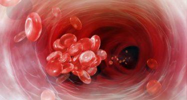 Как улучшить состав крови: продукты, разжижающие кровь