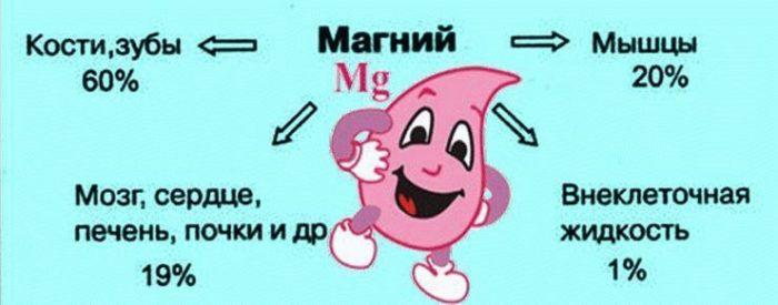 magnij-dlya-zdorovya