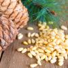 Полезные свойства кедровых орехов и противопоказания