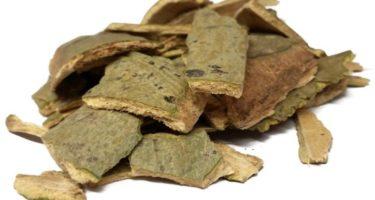 Лечебные свойства коры осины — рецепты при диабете, простатите и другие