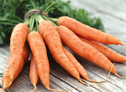 Ах, эта вкусная морковка! … Целебные свойства овоща