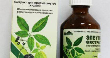 Правила применения настойки элеутерококка